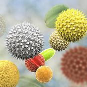 allergikergeeignet - (c) Dr_Microbe | Getty Images 845977664